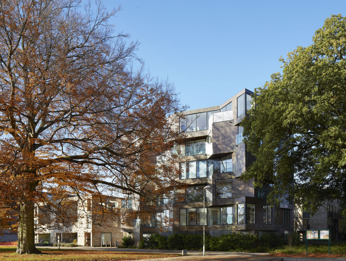 Alison Brooks Architects _ Accordia _ Brass Building _ Photo with Two Trees