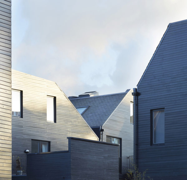 Alison Brooks Architects _ Newhall Be _ Harlow Essex _ Photo Roofs 1